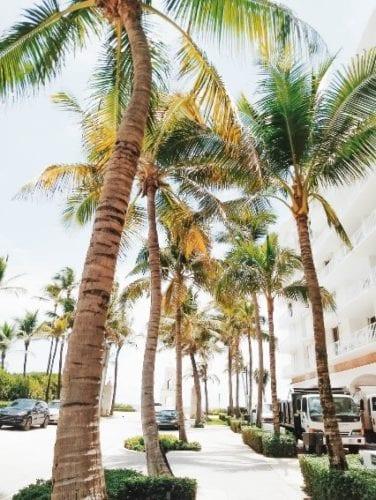 Palm Beach incentive trip